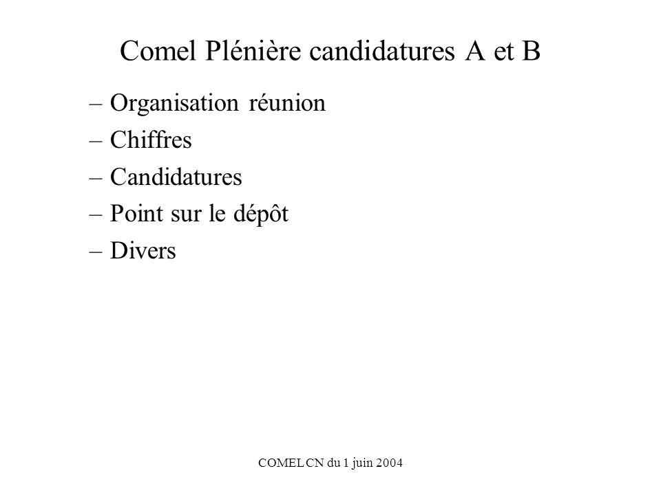 COMEL CN du 1 juin 2004 Comel Plénière candidatures A et B –Organisation réunion –Chiffres –Candidatures –Point sur le dépôt –Divers