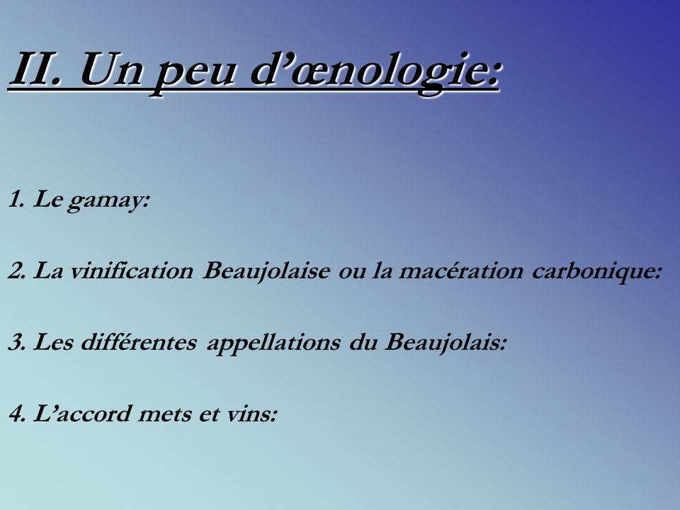 II.Un peu dœnologie: 1.Le gamay: 2. La vinification Beaujolaise ou la macération carbonique: 3.