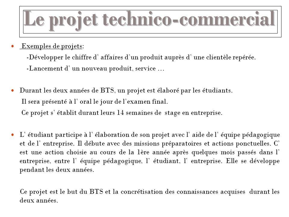 Exemples de projets: -Développer le chiffre d affaires dun produit auprès d une clientèle repérée. -Lancement d un nouveau produit, service … Durant l