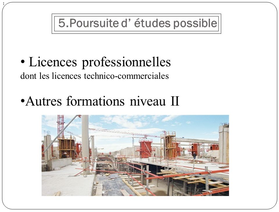 5.Poursuite d études possible I Licences professionnelles dont les licences technico-commerciales Autres formations niveau II