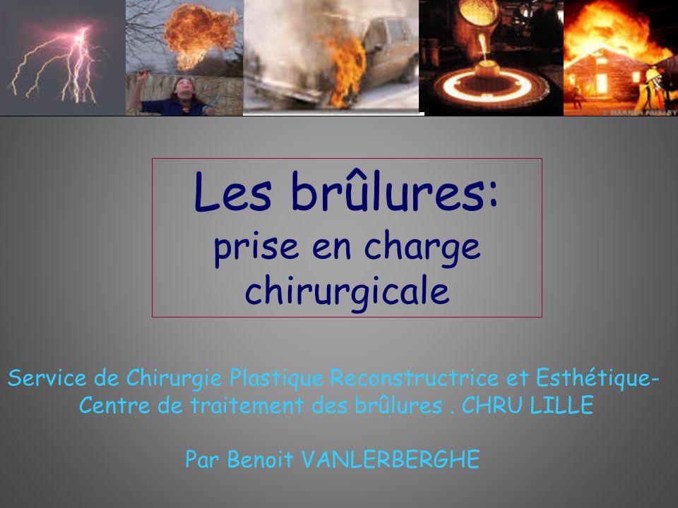 Profondeur de la brûlure : aspect histologique 1er degré 2e d.