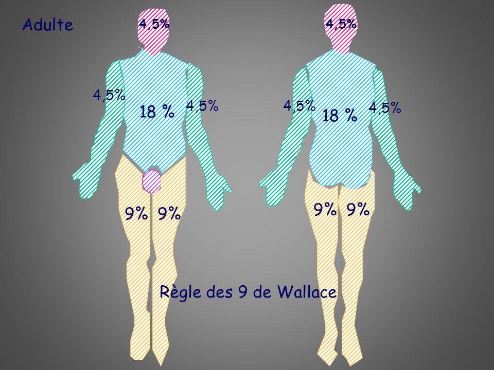 Adulte 18 % 4,5% 18 % 4,5% 9% Règle des 9 de Wallace