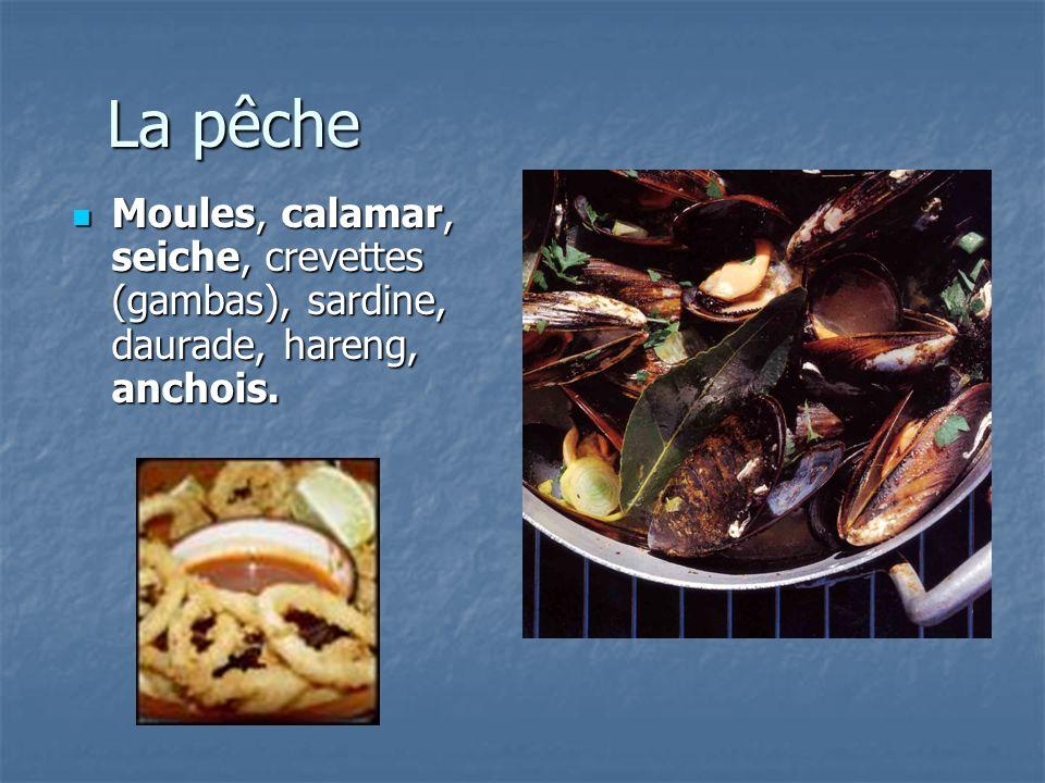 La pêche Moules, calamar, seiche, crevettes (gambas), sardine, daurade, hareng, anchois. Moules, calamar, seiche, crevettes (gambas), sardine, daurade