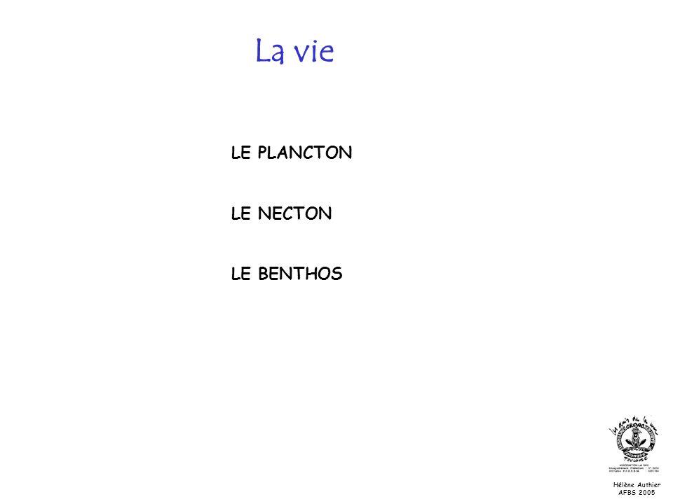 La vie LE PLANCTON LE NECTON LE BENTHOS Hélène Authier AFBS 2005