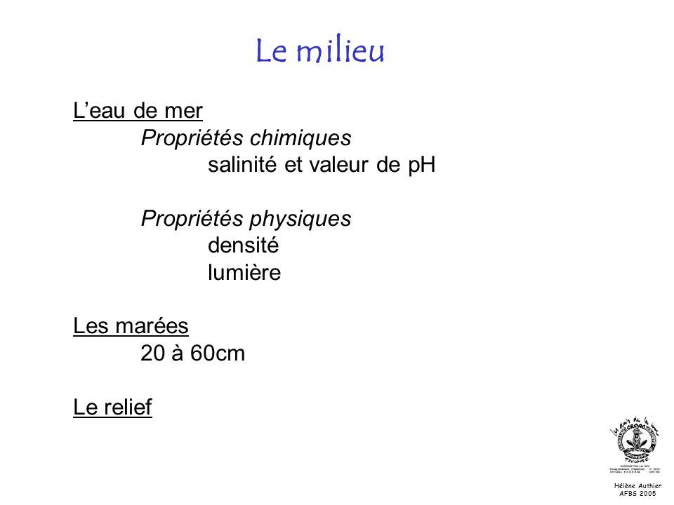Le milieu Leau de mer Propriétés chimiques salinité et valeur de pH Propriétés physiques densité lumière Les marées 20 à 60cm Le relief Hélène Authier