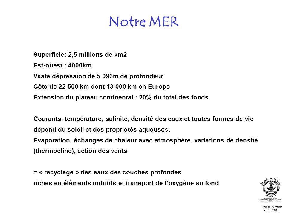 Notre MER Superficie: 2,5 millions de km2 Est-ouest : 4000km Vaste dépression de 5 093m de profondeur Côte de 22 500 km dont 13 000 km en Europe Exten