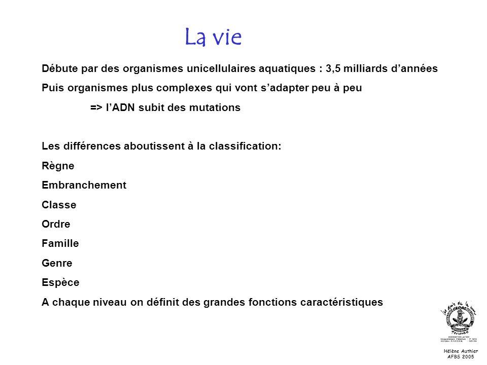 La vie Hélène Authier AFBS 2005