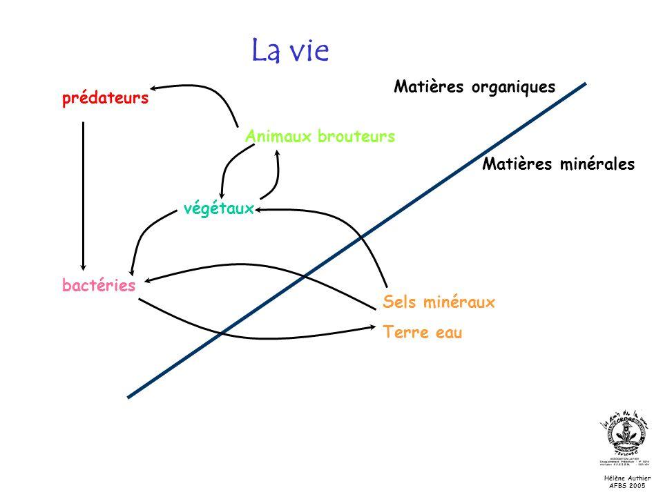 La vie Matières organiques Matières minérales Sels minéraux Terre eau végétaux bactéries prédateurs Animaux brouteurs Hélène Authier AFBS 2005