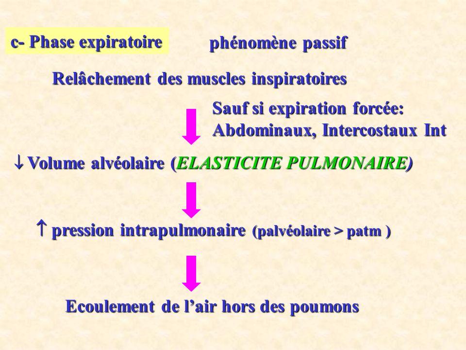 c- Phase expiratoire Relâchement des muscles inspiratoires Volume alvéolaire (ELASTICITE PULMONAIRE) Volume alvéolaire (ELASTICITE PULMONAIRE) pression intrapulmonaire (palvéolaire > patm ) pression intrapulmonaire (palvéolaire > patm ) Ecoulement de lair hors des poumons phénomène passif phénomène passif Sauf si expiration forcée: Abdominaux, Intercostaux Int