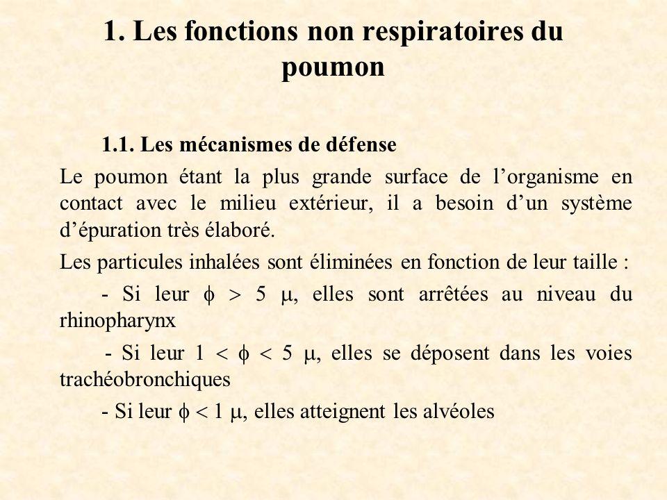 1.Les fonctions non respiratoires du poumon 1.1.