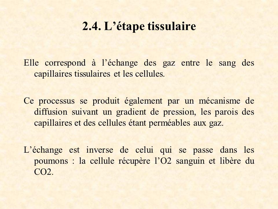 2.4. Létape tissulaire Elle correspond à léchange des gaz entre le sang des capillaires tissulaires et les cellules. Ce processus se produit également