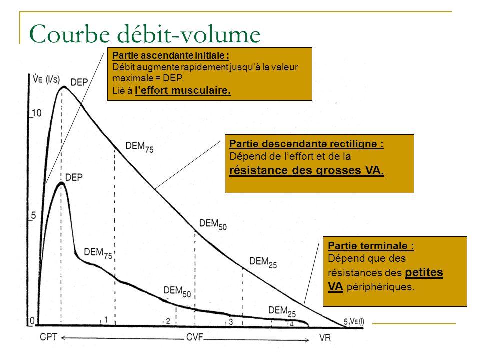 Courbe débit-volume Partie ascendante initiale : Débit augmente rapidement jusquà la valeur maximale = DEP. Lié à leffort musculaire. Partie descendan