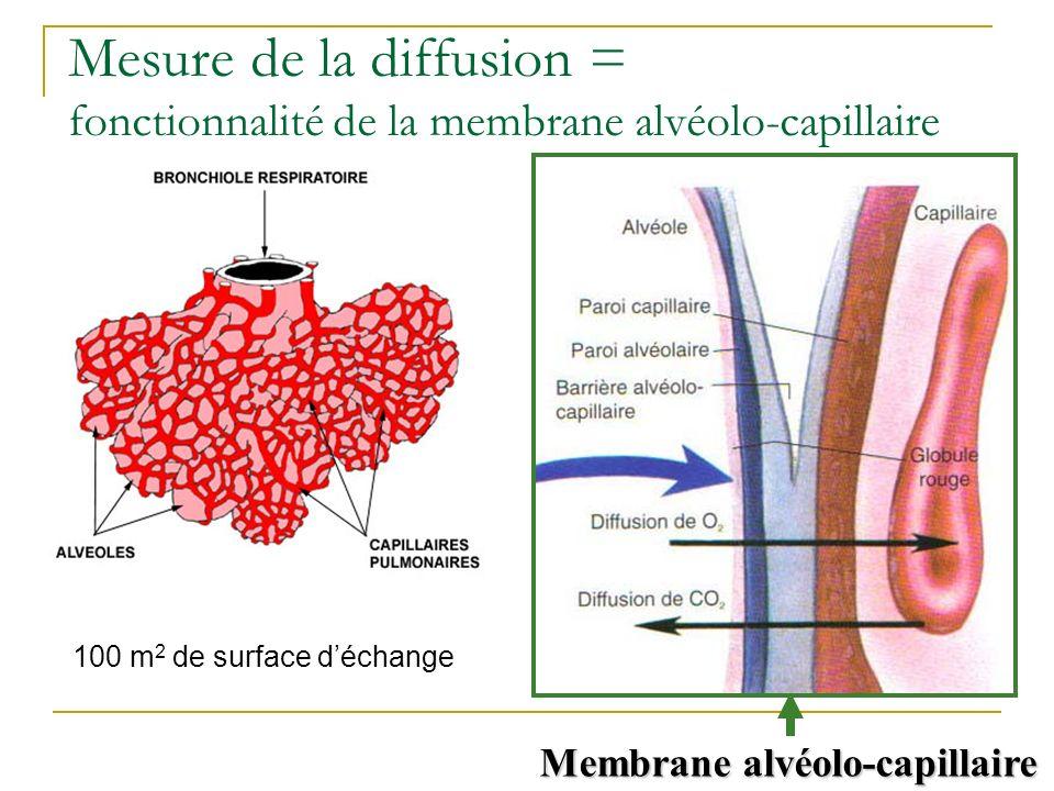 Membrane alvéolo-capillaire 100 m 2 de surface déchange Mesure de la diffusion = fonctionnalité de la membrane alvéolo-capillaire