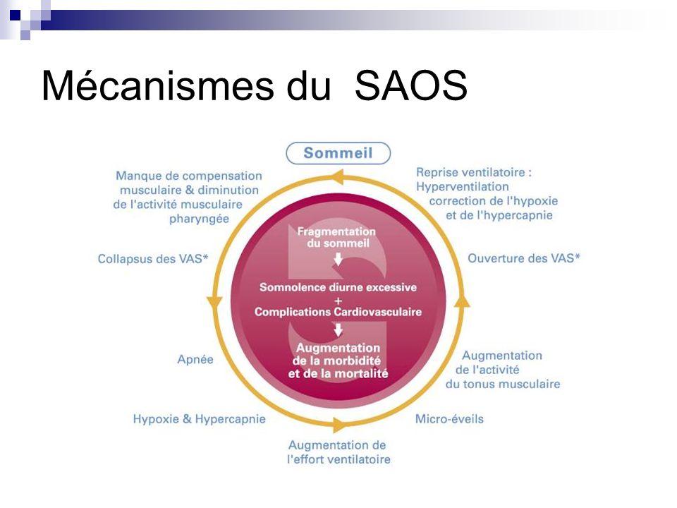 Mécanismes du SAOS