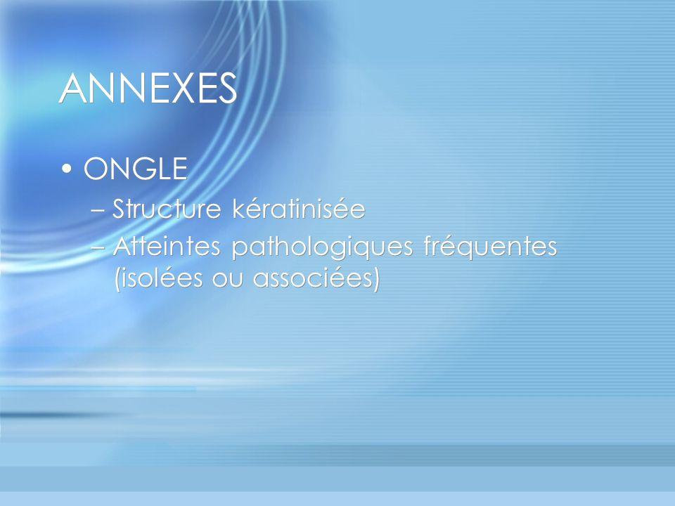 ANNEXES ONGLE –Structure kératinisée –Atteintes pathologiques fréquentes (isolées ou associées) ONGLE –Structure kératinisée –Atteintes pathologiques fréquentes (isolées ou associées)