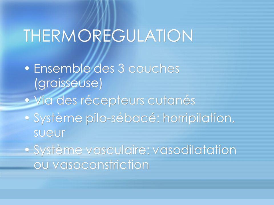 THERMOREGULATION Ensemble des 3 couches (graisseuse) Via des récepteurs cutanés Système pilo-sébacé: horripilation, sueur Système vasculaire: vasodilatation ou vasoconstriction Ensemble des 3 couches (graisseuse) Via des récepteurs cutanés Système pilo-sébacé: horripilation, sueur Système vasculaire: vasodilatation ou vasoconstriction