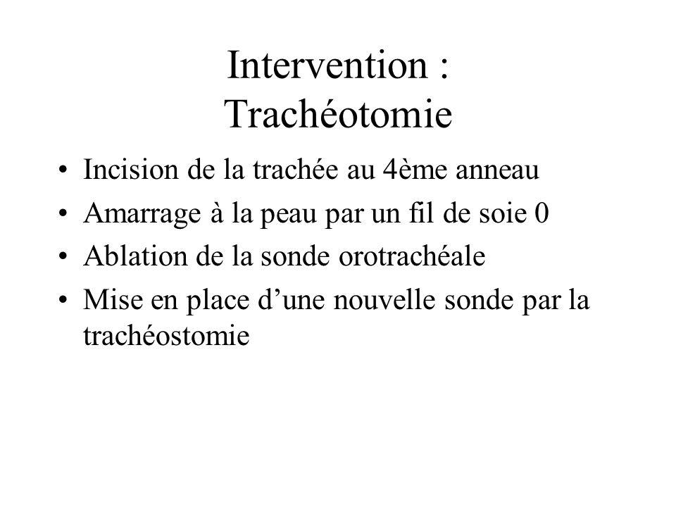 Intervention : Trachéotomie Incision de la trachée au 4ème anneau Amarrage à la peau par un fil de soie 0 Ablation de la sonde orotrachéale Mise en pl