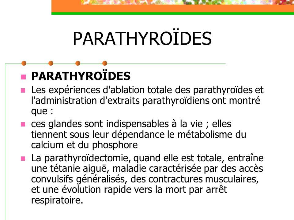 PARATHYROÏDES Les expériences d'ablation totale des parathyroïdes et l'administration d'extraits parathyroïdiens ont montré que : ces glandes sont ind