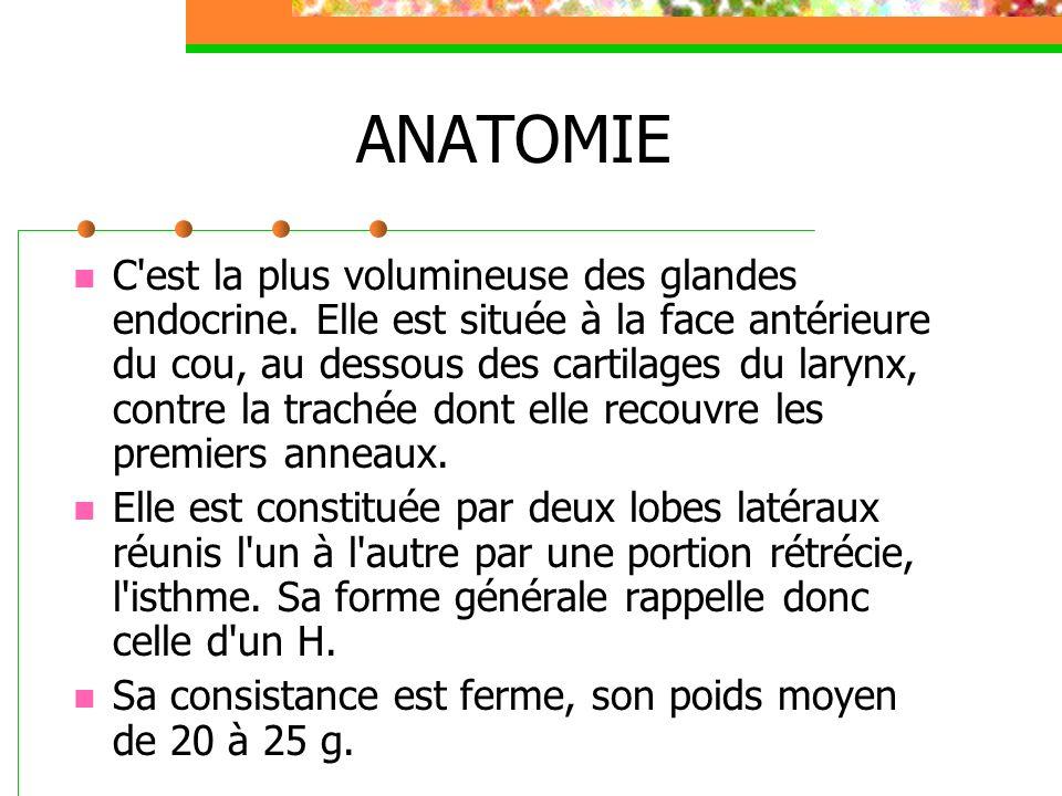 ANATOMIE C'est la plus volumineuse des glandes endocrine. Elle est située à la face antérieure du cou, au dessous des cartilages du larynx, contre la