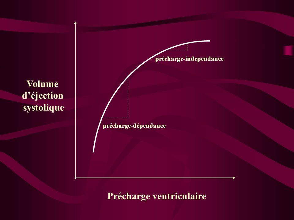 Volume déjection systolique précharge-dépendance Précharge ventriculaire précharge-independance