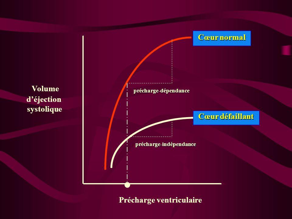 . Volume déjection systolique Précharge ventriculaire Cœur normal Cœur normal Cœur défaillant Cœur défaillant précharge-dépendance précharge-indépenda