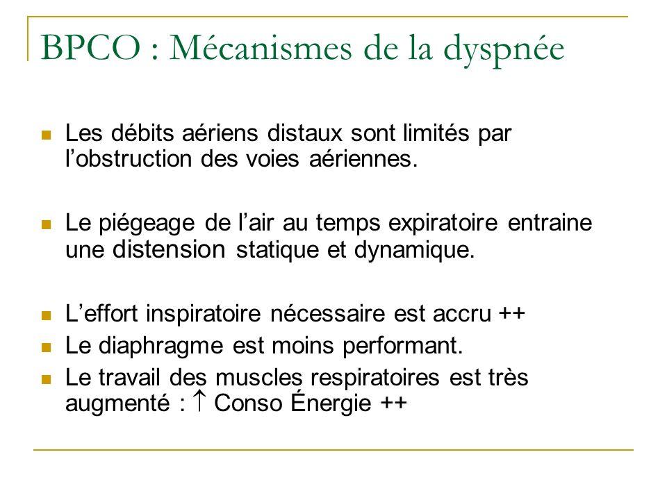 BPCO : Mécanismes de la dyspnée Les débits aériens distaux sont limités par lobstruction des voies aériennes. Le piégeage de lair au temps expiratoire
