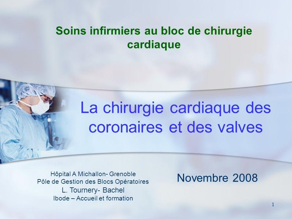 1 La chirurgie cardiaque des coronaires et des valves Hôpital A Michallon- Grenoble Pôle de Gestion des Blocs Opératoires L.
