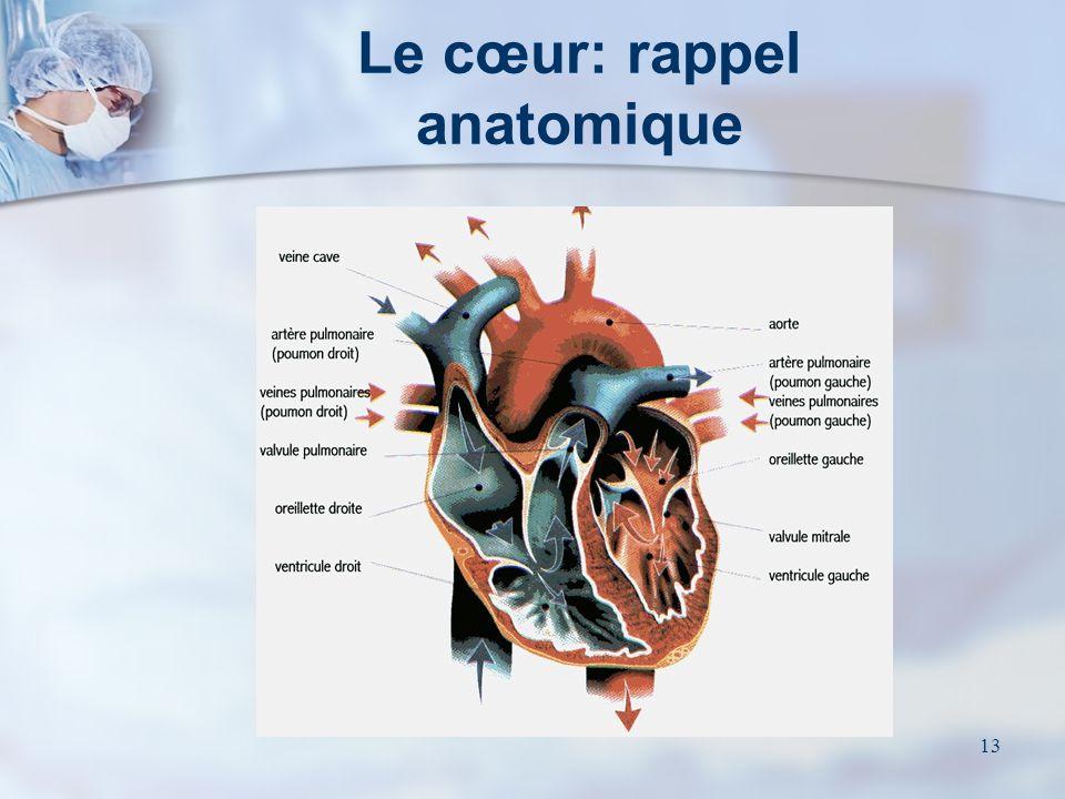 12 Lanesthésie Tout geste majeur de chirurgie cardiaque se fait sous anesthésie générale Consultation préopératoire Prémédication et antibioprophylaxi