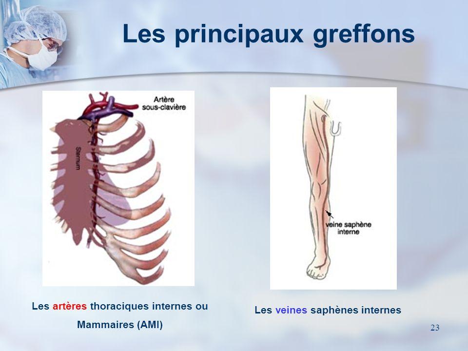 22 Choix des greffons (2) 2) Les veines saphènes internes Les veines saphènes sont de grande longueur / diamètre et permettent toutes les revascularis