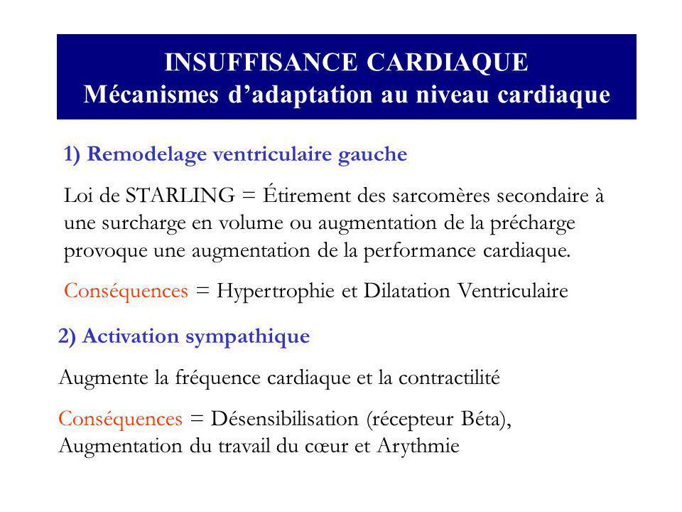 INSUFFISANCE CARDIAQUE Mécanismes dadaptation au niveau cardiaque 1) Remodelage ventriculaire gauche Loi de STARLING = Étirement des sarcomères second