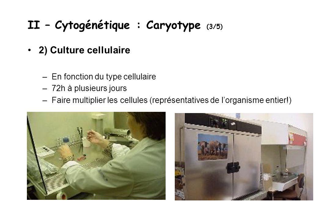 II – Cytogénétique : Caryotype (3/5) 2) Culture cellulaire –En fonction du type cellulaire –72h à plusieurs jours –Faire multiplier les cellules (repr