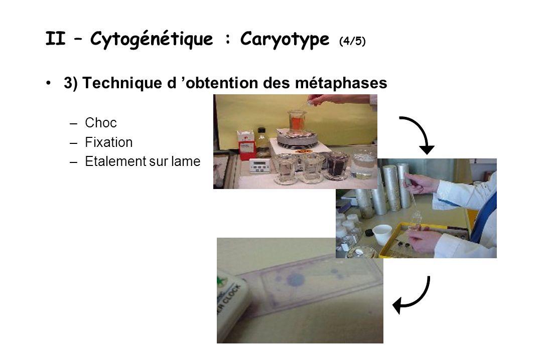 II – Cytogénétique : Caryotype (4/5) 3) Technique d obtention des métaphases –Choc –Fixation –Etalement sur lame