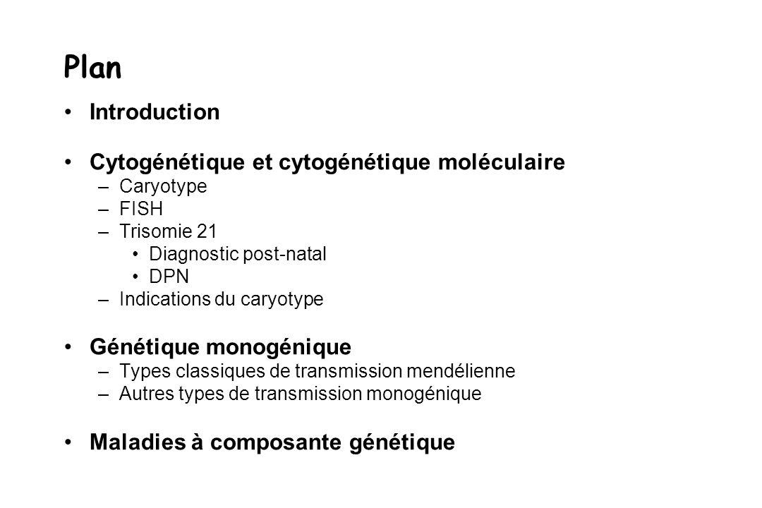Plan Introduction Cytogénétique et cytogénétique moléculaire –Caryotype –FISH –Trisomie 21 Diagnostic post-natal DPN –Indications du caryotype Génétiq