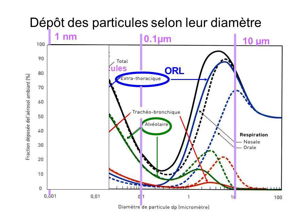Dépôt des particules selon leur diamètre PUF et Nanoparticules 0.1µm 10 µm 1 nm ORL