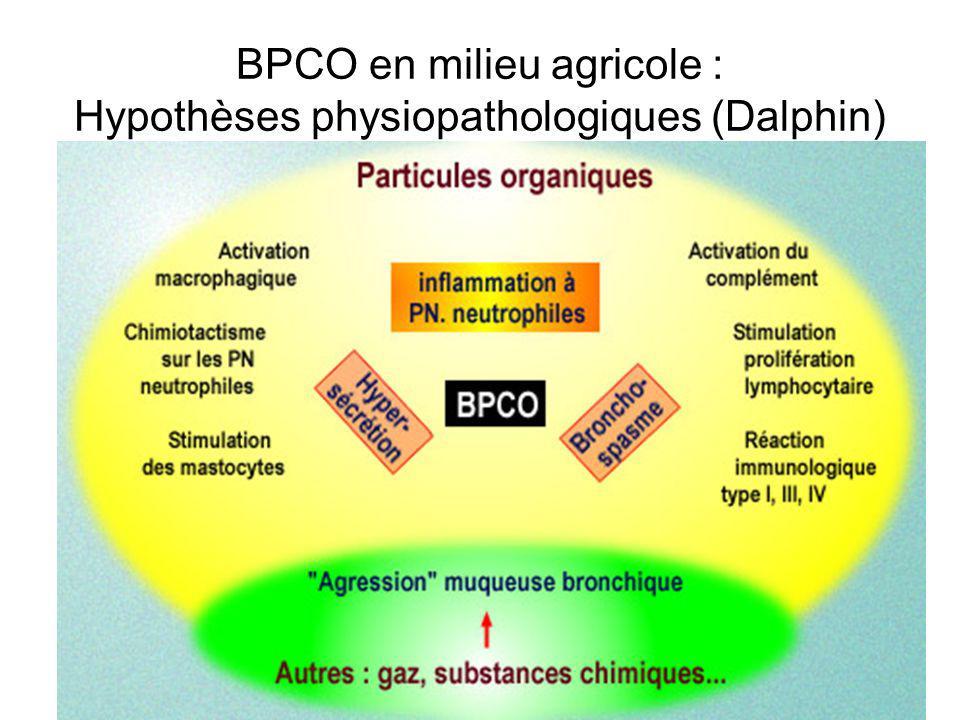 BPCO en milieu agricole : Hypothèses physiopathologiques (Dalphin)