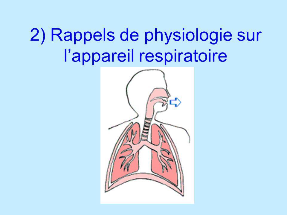Amener lO 2 en contact avec les alvéoles (et éliminer le CO 2 ) respirationhématose 200 millions dalvéoles pulmonaires soit une surface de près de 100 m 2 pour les échanges gazeux (double barrière constituée par lépithélium alvéolaire et lendothélium capillaire dune épaisseur de 1 µm)