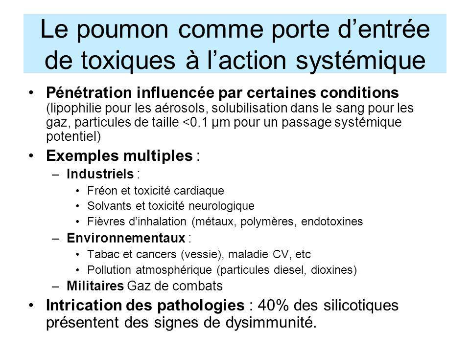Le poumon comme porte dentrée de toxiques à laction systémique Pénétration influencée par certaines conditions (lipophilie pour les aérosols, solubili