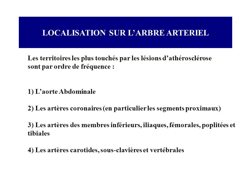 LOCALISATION SUR LARBRE ARTERIEL Les territoires les plus touchés par les lésions dathérosclérose sont par ordre de fréquence : 1) Laorte Abdominale 2
