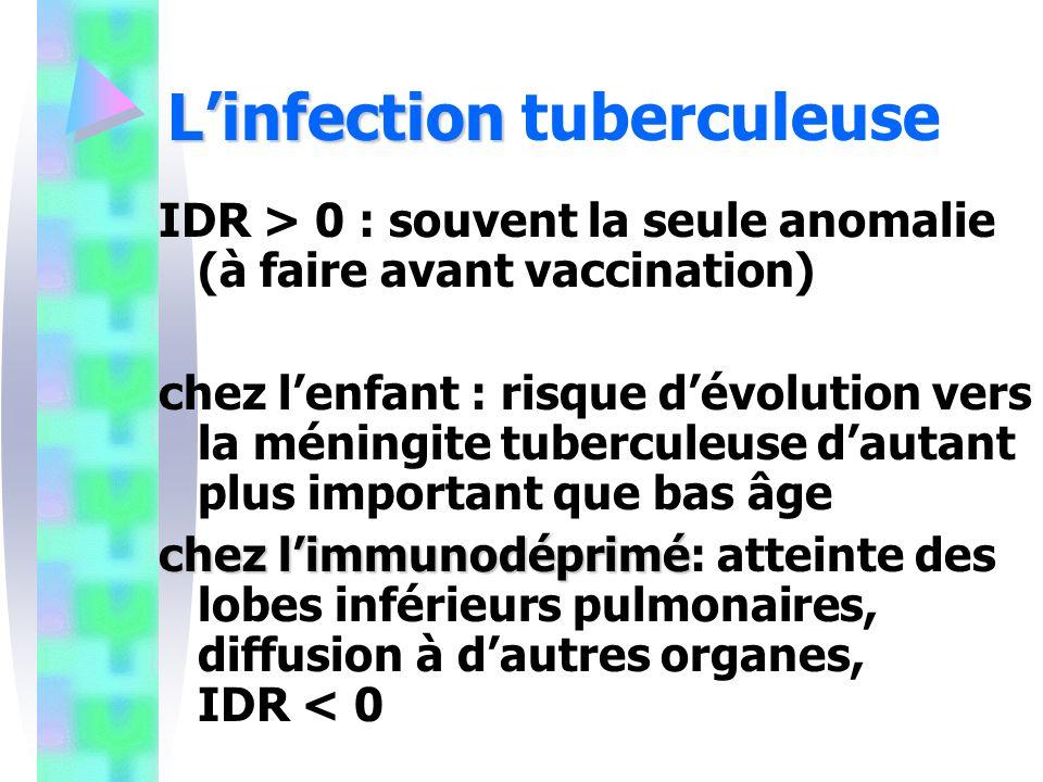 Linfection Linfection tuberculeuse IDR > 0 : souvent la seule anomalie (à faire avant vaccination) chez lenfant : risque dévolution vers la méningite tuberculeuse dautant plus important que bas âge chez limmunodéprimé chez limmunodéprimé: atteinte des lobes inférieurs pulmonaires, diffusion à dautres organes, IDR < 0