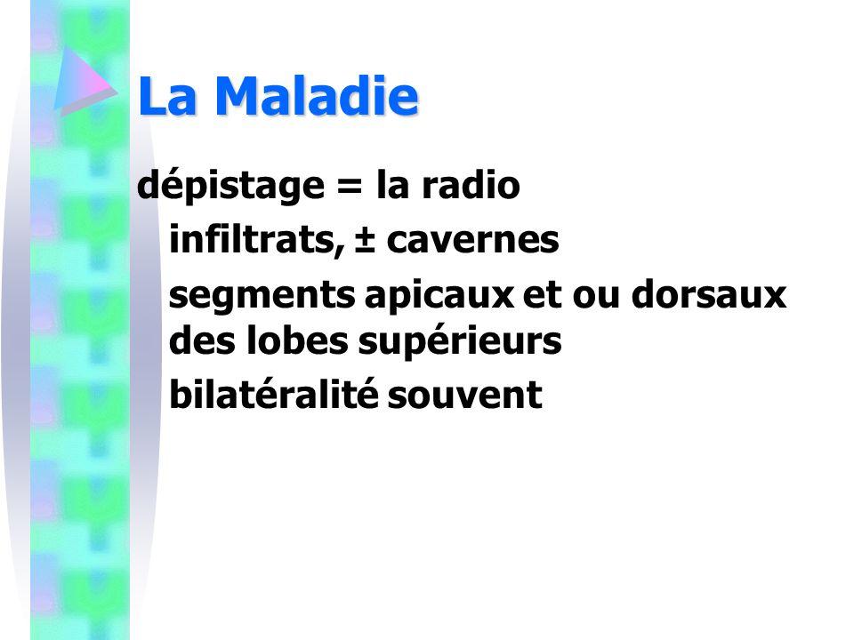 La Maladie dépistage = la radio infiltrats, ± cavernes segments apicaux et ou dorsaux des lobes supérieurs bilatéralité souvent