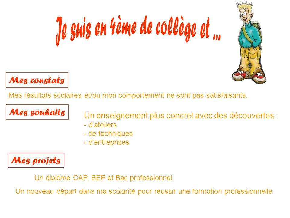 5 ème de collège 4 ème de collège 3°DP6 Cycle central Lycée professionnel