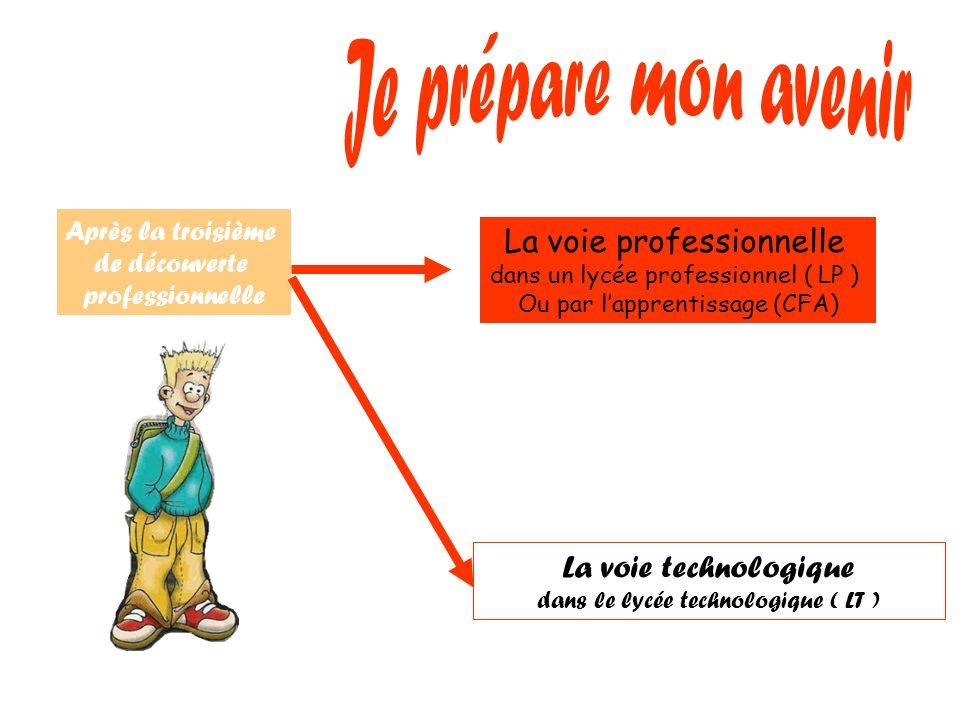 Après la troisième de découverte professionnelle La voie professionnelle dans un lycée professionnel ( LP ) Ou par lapprentissage (CFA) La voie techno