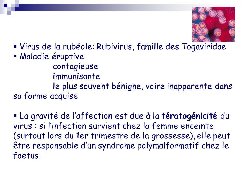Virus de la rubéole: Rubivirus, famille des Togaviridae Maladie éruptive contagieuse immunisante le plus souvent bénigne, voire inapparente dans sa fo