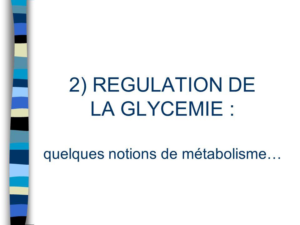 2) REGULATION DE LA GLYCEMIE : quelques notions de métabolisme…