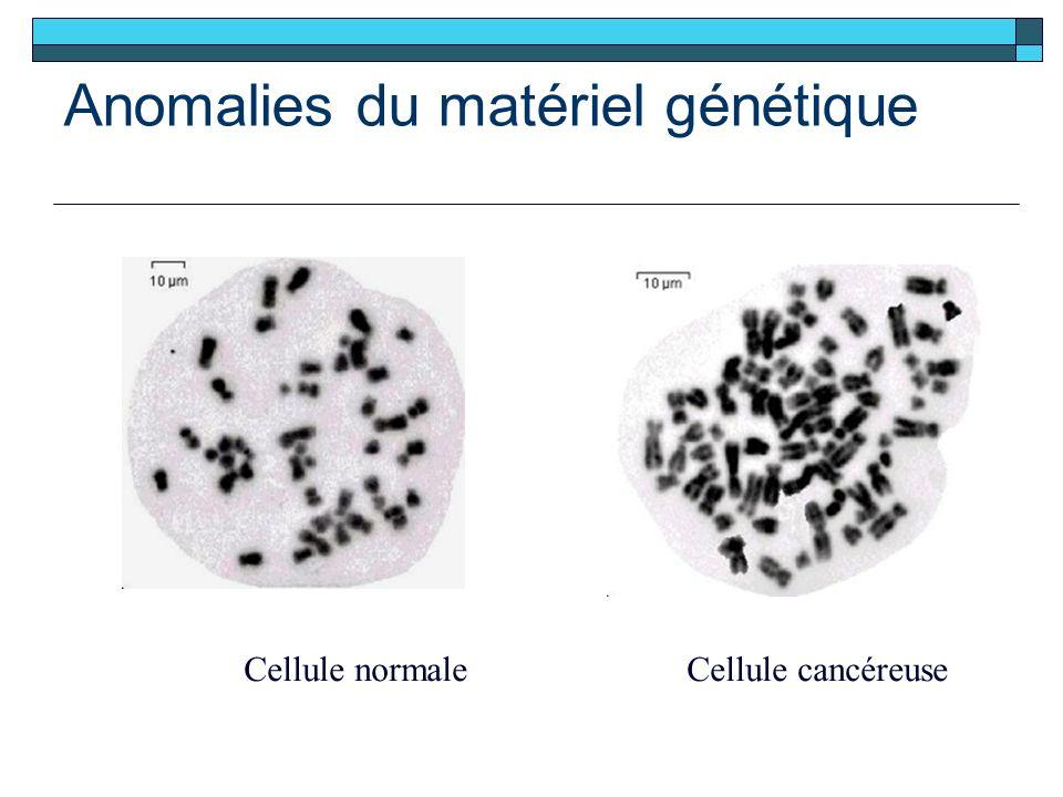 Anomalies du matériel génétique Cellule normaleCellule cancéreuse