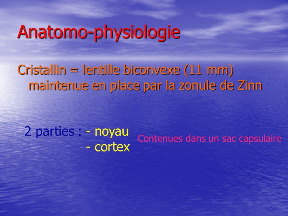 Anatomo-physiologie Le cristallin est « lorgane » de laccommodation Presbytie perte progressive de laccommodation =
