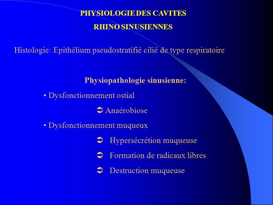 PHYSIOLOGIE DES CAVITES RHINO SINUSIENNES Histologie: Epithélium pseudostratifié cilié de type respiratoire Physiopathologie sinusienne: Dysfonctionne