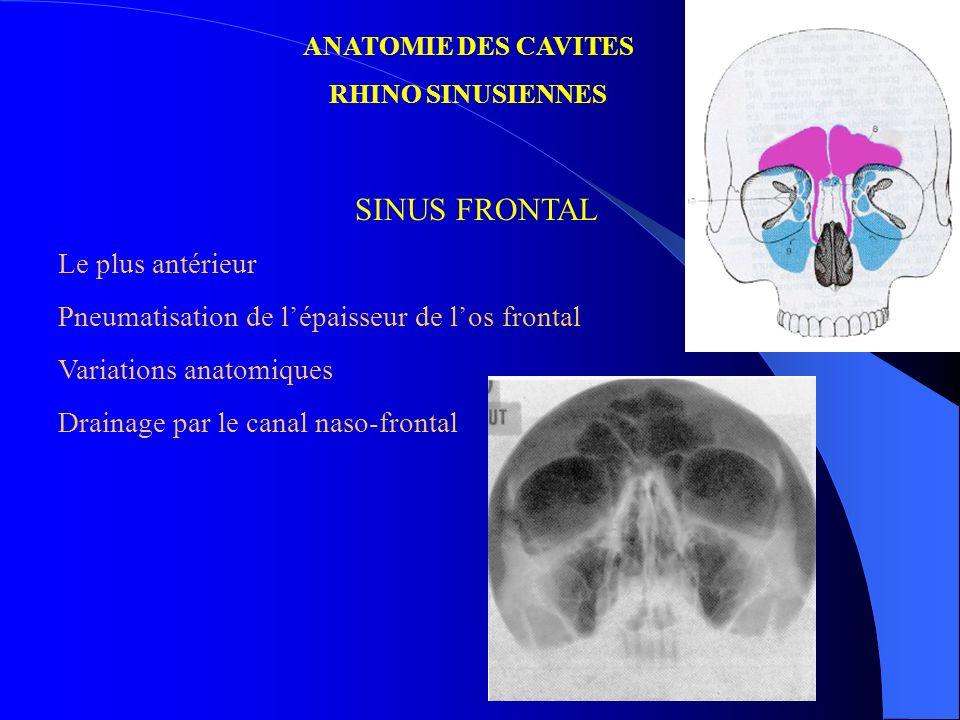 ANATOMIE DES CAVITES RHINO SINUSIENNES SINUS FRONTAL Le plus antérieur Pneumatisation de lépaisseur de los frontal Variations anatomiques Drainage par