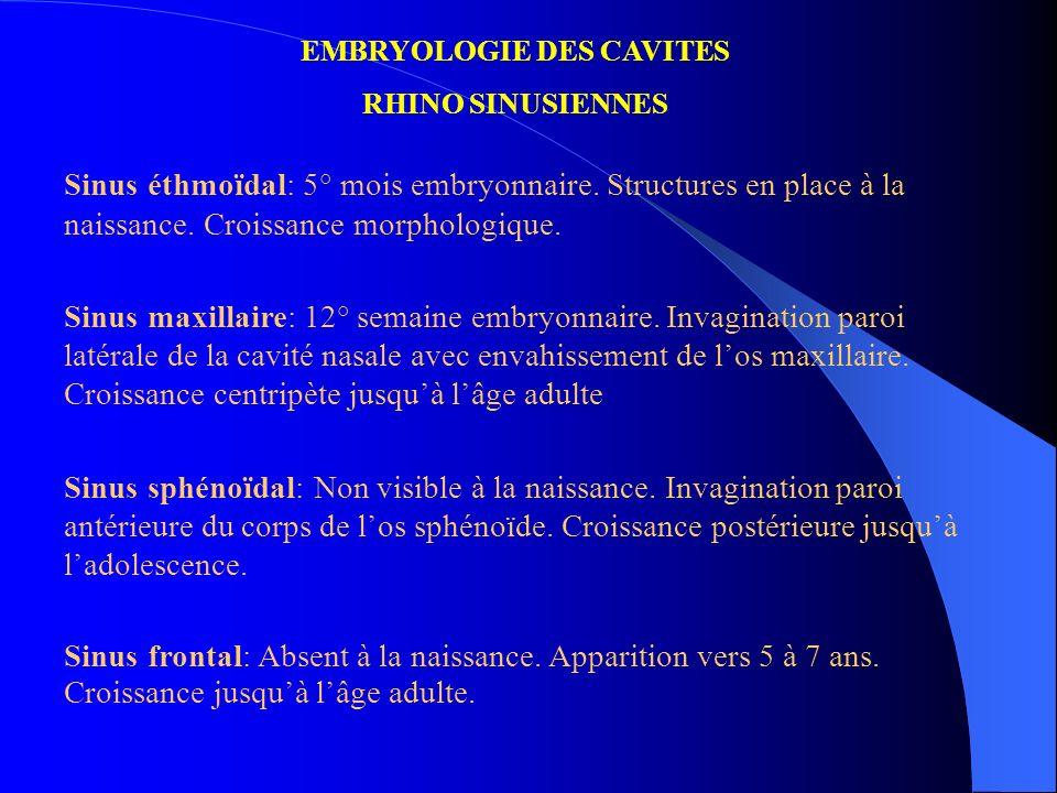 EMBRYOLOGIE DES CAVITES RHINO SINUSIENNES Sinus éthmoïdal: 5° mois embryonnaire. Structures en place à la naissance. Croissance morphologique. Sinus m