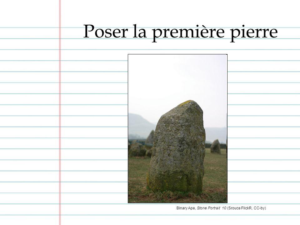Poser la première pierre Binary Ape, Stone Portrait 10 (Srouce FlickR, CC-by)